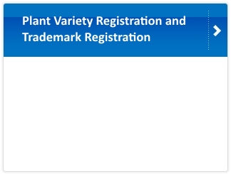 Plant Variety Registration and Trademark Registration
